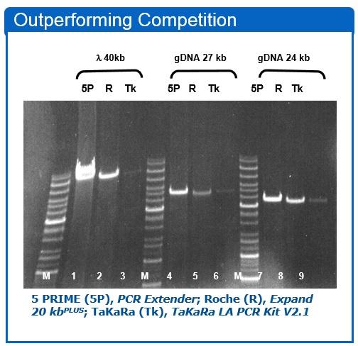 5 Prime PCR Extender System 2